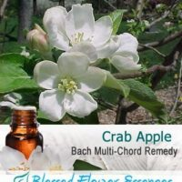 Crab Apple Flower Remedy