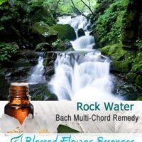 Rock Water Flower Remedy