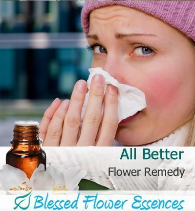 All Better Flower Remedy Blessed Flower Essences Brand