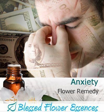 Anxiety Flower Remedy (Blessed Flower Essences Brand)