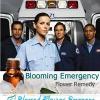 Blooming Emergency Remedy