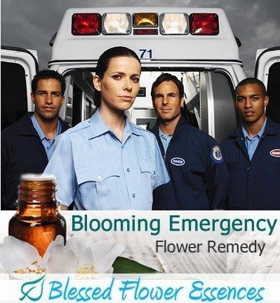 Blooming Emergency Rescue Remedy (Blessed Flower Essences Brand)