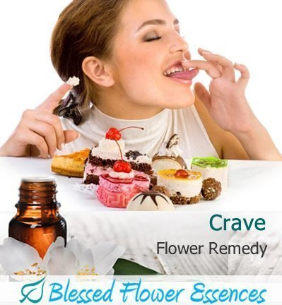 Crave Flower Remedy (Blessed Flower Essences Brand)