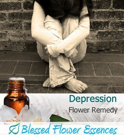 Depression Flower Remedy (Blessed Flower Essences Brand)