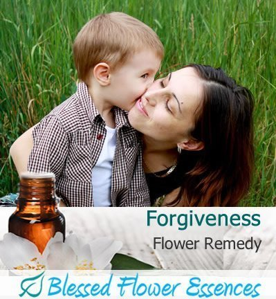 Forgiveness Flower Remedy (Blessed Flower Essences Brand)