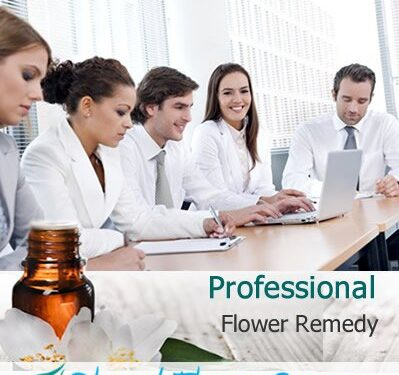 Professional Flower Remedy (Blessed Flower Essences Brand)