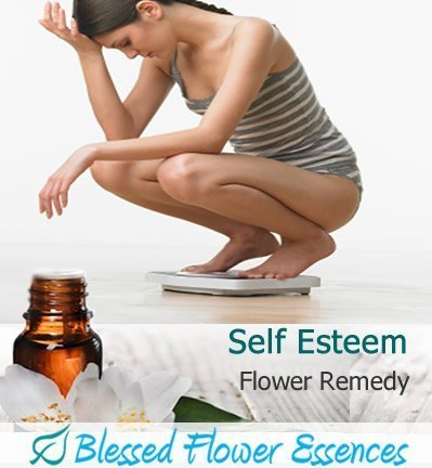 Self Esteem Flower Remedy (Blessed Flower Essences Brand)