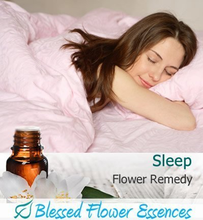 Sleep Flower Remedy (Blessed Flower Essences Blend)