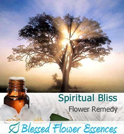 Spiritual Bliss Remedy (Blessed Flower Essences Brand)
