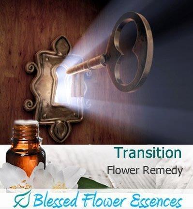 Transition Flower Remedy (Blessed Flower Essences Brand)
