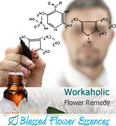 Workaholic Flower Remedy (Blessed Flower Essences Brand)