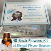 Bach Flower Essences Box Kit Set (40 Remedies)