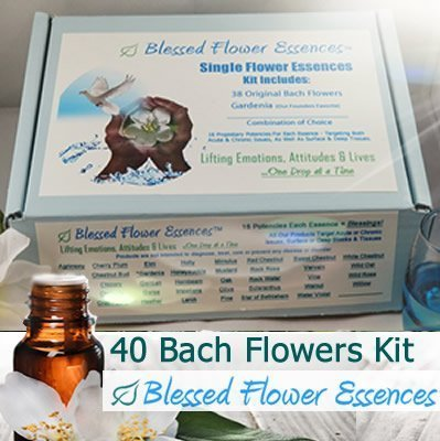 Bach Flower Essence Kit Box Set Product Image