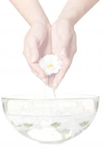 Blessed Flower Essences Main Content Background Image