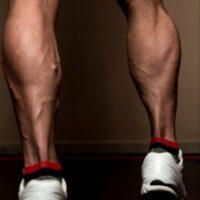 Zone 23 – Lower Legs Remedy
