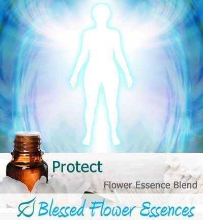 Protect Flower Essence Blend Image