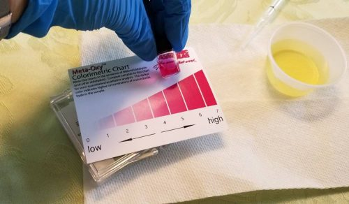 Home Oxidation Testing with Meta-Oxy Test